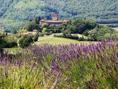castello-di-Montechiaro
