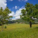 Panorama-con-castello-di-Montechiaro